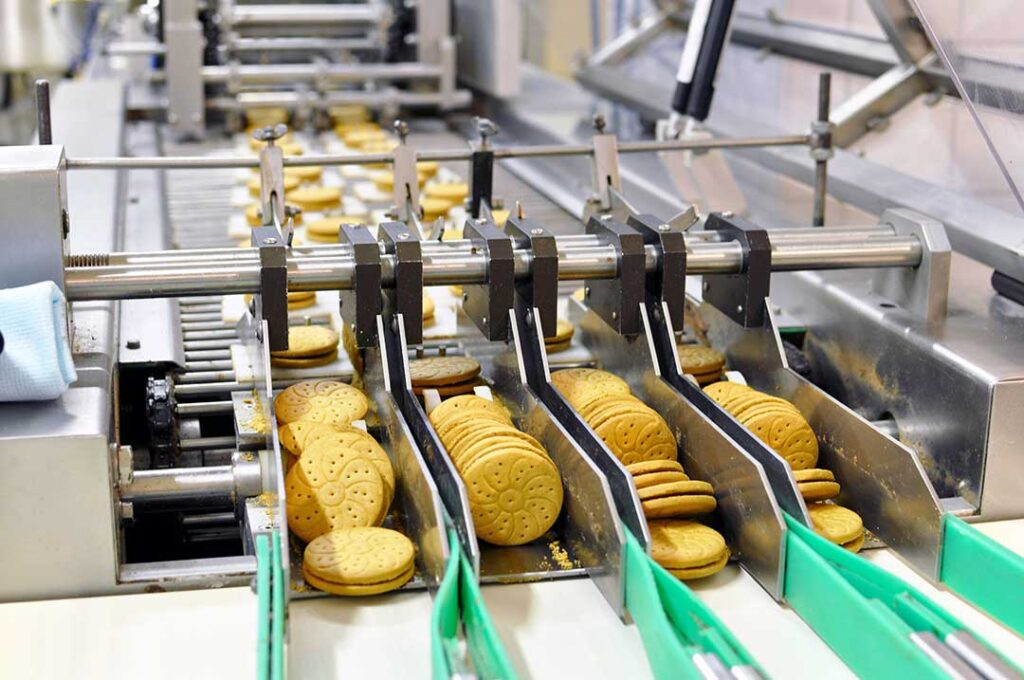 conveyor belt with biscuits in a food factory